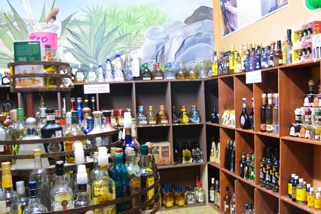 Cabo Private Site Seeing Tours Tequila