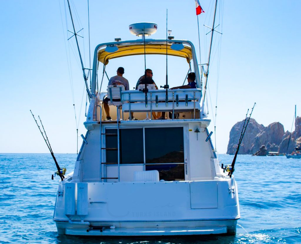Deep Sea Fishing tours Cabo San Lucas