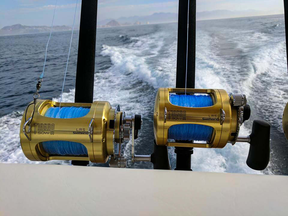 Deep Sea Fishing Cabo San Lucas