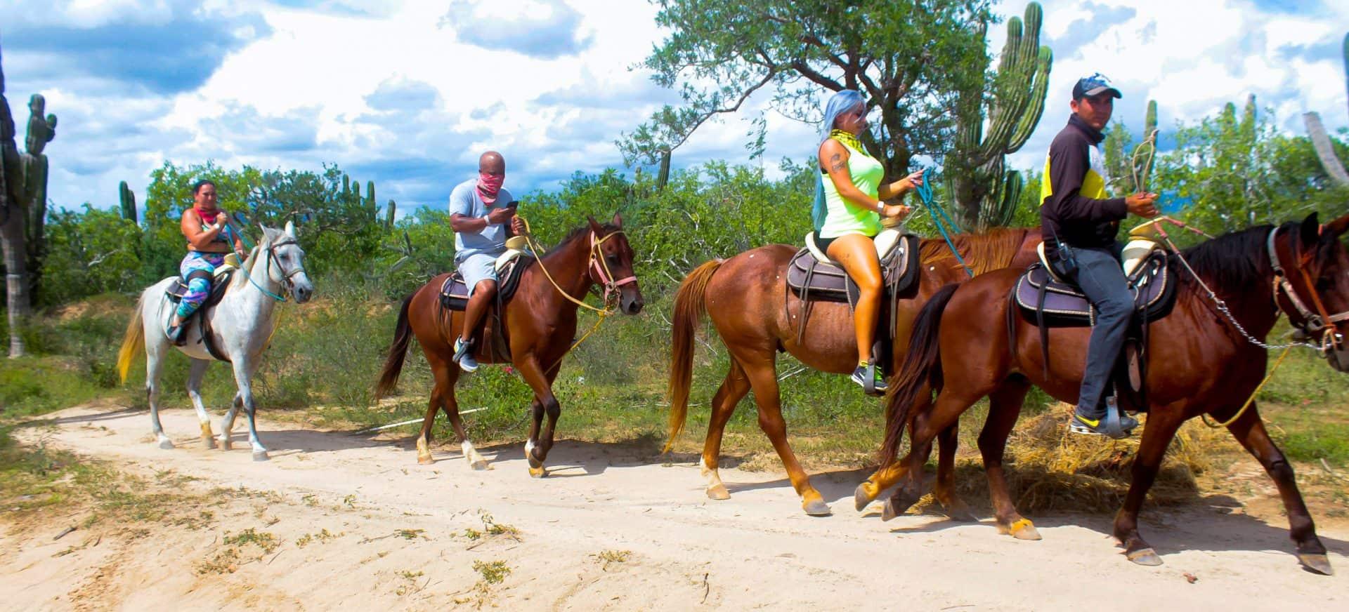 Cabo Horseback Rides Cabo San Lucas Cruise Excursions