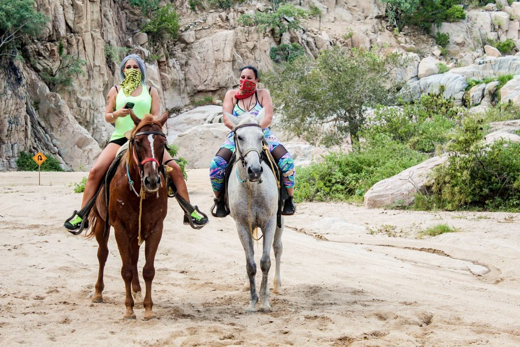 beach and desert horseback riding cabo