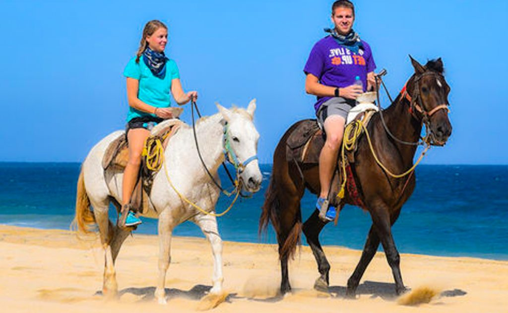 beach horseback riding cabo