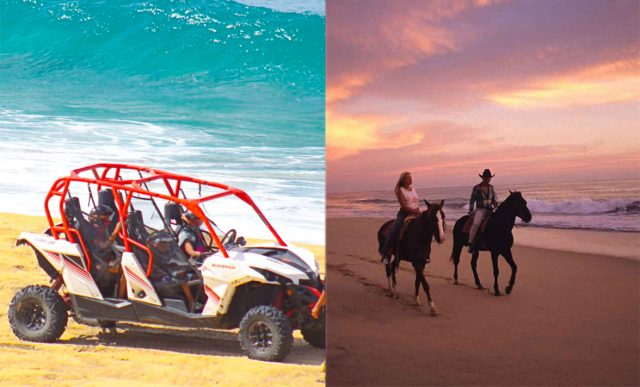 Cabo UTV Horseback Excursion